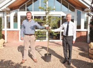 Advertiser launches competition to win tree for your school playground